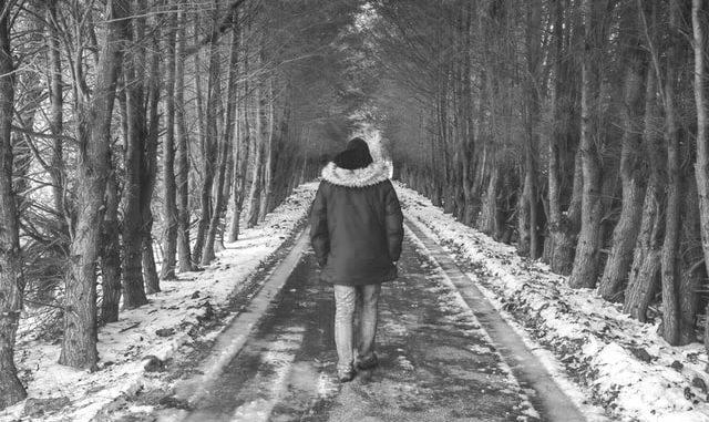 Mann geht im Winter Waldweg entlang
